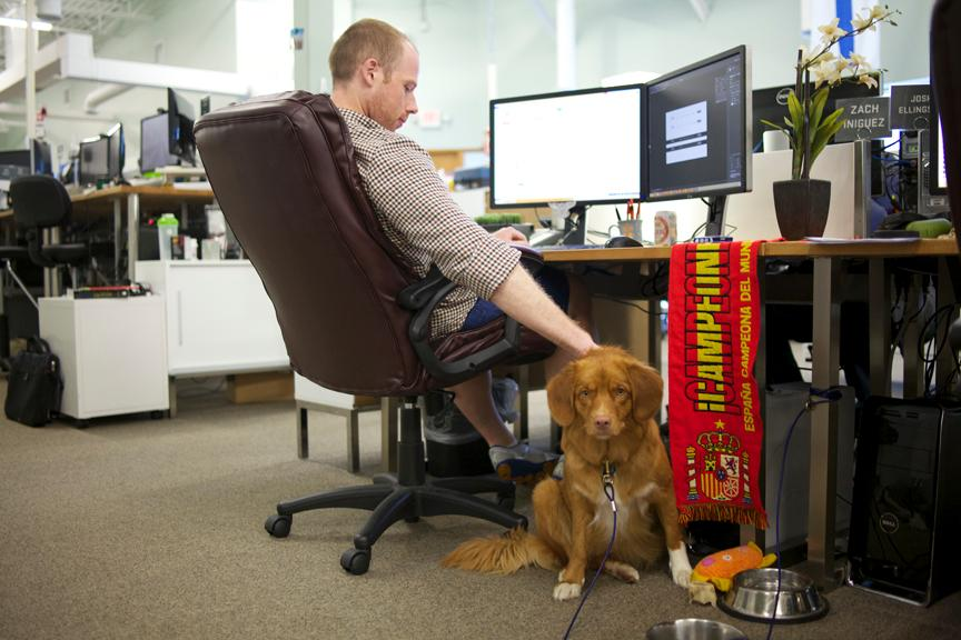 dogs_at_work_nerdery_2