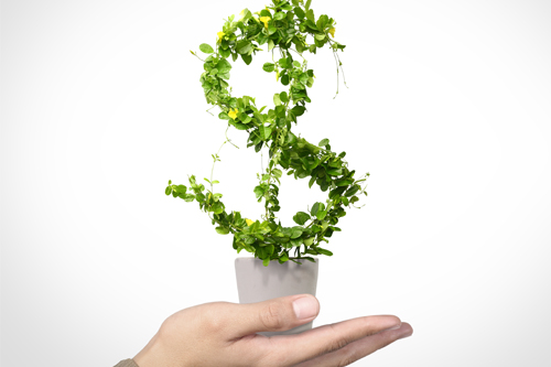 A dollar sign grows as a plant out of a cup resting on a hand