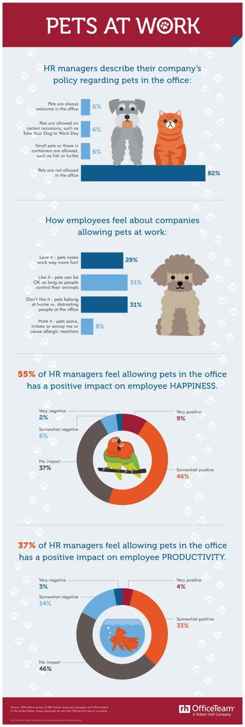 An infographic on company policies toward pets in the workplace