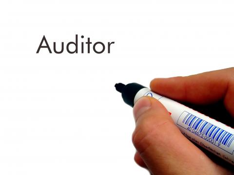 Pen at whiteboard starting to write auditor job description