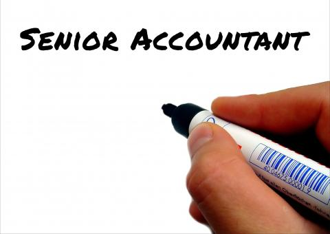 Write The Best Senior Accountant Job Description  Robert Half