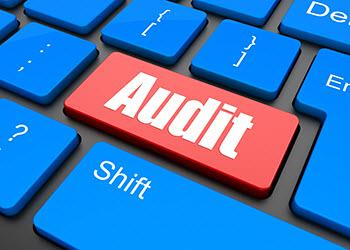 Keyword with Audit key, referring to payroll system audits