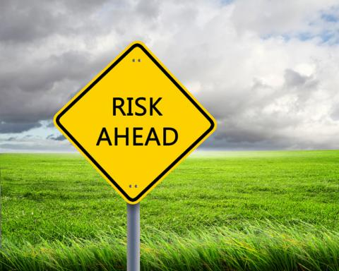 Top Executives Weigh in on Risk Environment