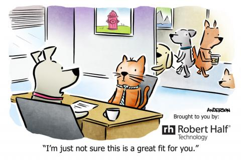 Cartoon about cultural fit with a dog interviewing a cat for a job in an all dog business.